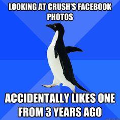 awkward penguin, funny crush memes
