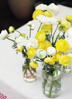 Yellow & White Ranunculus