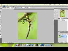 Graphic watermark Photoshop tutorial