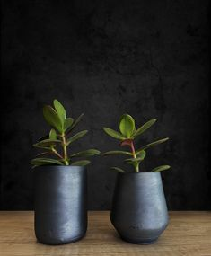 Indoor Planters, Ceramic Planters, Planter Pots, Succulent Pots, Succulents, Plant Holders, Potted Plants, Matte Black, Handmade Items