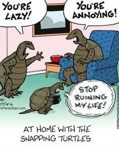 Funny pics, hilariousness, humour animal, jokes funny …For more funny pictures and hilarious humor visit www. Funny Cartoons, Funny Comics, Funny Jokes, Cartoon Humor, Funny Ads, Cartoon Pics, Dad Jokes, Snapping Turtle, Snes Classic