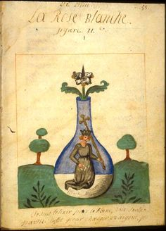 Alchemical image from Le Precieux don de Dieu by Jacques de Nuysement, 17th/18th century.