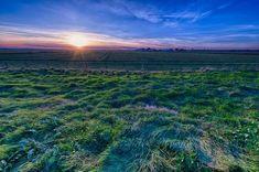 Best lenses for nikon - Delta Farm. Shot with the Nikon D800E and 14-24mm f/2.8G lens. © Sohail Mamdani
