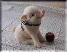 This little piggy stayed home, how cute, this one isn't real but there are real teacup pigs they grow to be around 40 lbs, which is small for a pig. Cute Baby Animals, Animals And Pets, Funny Animals, Animal Pictures, Cute Pictures, Teacup Pigs, Baby Pigs, Cute Pigs, Tier Fotos