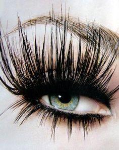 Goth:  #Spider ~ Spider lashes.