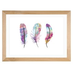 Print - Watercolour Feathers