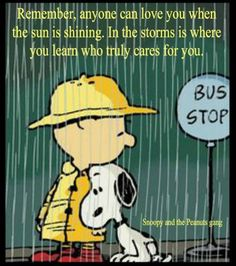 Snoopy e Charlie Brown Charlie Brown Und Snoopy, Charlie Brown Quotes, Peanuts Quotes, Snoopy Quotes, Peanuts Cartoon, Peanuts Snoopy, Snoopy Pictures, Pomes, Joe Cool