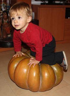 My little pumpkin holding down our Test Pumpkin