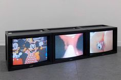 Sturtevant, Trilogy of Transgression, 2004