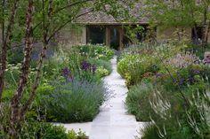 Marcus Barnett Studio are based in west London and they specialise in Garden & Landscape Design. Back Gardens, Small Gardens, Outdoor Gardens, House Landscape, Landscape Design, Parcs, Front Yard Landscaping, Garden Styles, Garden Planning
