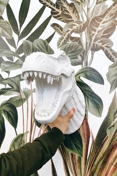 White Faux Taxidermy ® Triceratops & T rex Head Trophy Wall Decor. Jurassic detail in brilliant colors. Reimagine your space with chic & whimsical dinosaur head mount. Dinosaur Head, Faux Taxidermy, Animal Paintings, T Rex, Wall Mount, Whimsical, Sculpture, Extinct, Dinosaurs