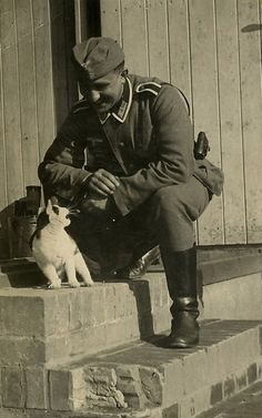 German WWII soldier with a hissing cat. German Soldiers Ww2, German Army, World History, World War Ii, Images Terrifiantes, Germany Ww2, War Photography, Historical Pictures, Ww2 Pictures