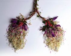 Flower lungs. This actually means a lot when you think about it.
