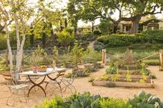A look inside the dream house Steve and Brooke Giannetti built in Ojai, California, known as Patina Farm, and the book they wrote about it. Farm Gardens, Outdoor Gardens, Patina Farm, Patina Style, Ojai California, Potager Garden, Herb Gardening, Garden Paths, Organic Farming