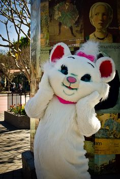 When I saw her in Epcot I literally screamed and begged my mom to let me get in line to see her.
