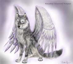 Wolf angel-this picture really shows how wolves can be angels just like anyone else! Going to attempt at drawing this..... Maybe add a halo.