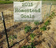 Homestead Goals for 2015 | Montana Homesteader