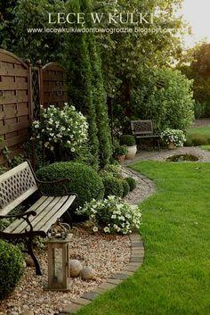 landscape yard #landscapingbackyard