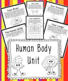 """I created this """"No Fluff"""" unit to teach my second graders about the human body. I covered pretty much everything that was expected by our district that our text book did not address. This human body unit contains printables and foldables to introduce your little ones to: The Human BodyFunctions of Each:HeartLungsBrainSkinKidneysStomachIntestineMuscleSkeletonFoldable for the Types of Scientists Who Study the Various Human body parts and…"""
