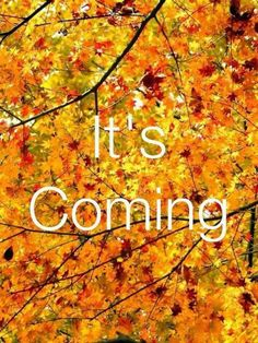 Fall, Its Coming Quotes Quote Autumn Fall Hello Fall Fall Is Coming Hello  Autumn Welcome Autumn