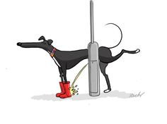 Another greyt Richard Skipworth cartoon! Italian Greyhound, Greyhound Art, Lévriers Whippet, Lurcher, Grey Hound Dog, Beautiful Dogs, Dog Art, Dog Life, Dog Pictures