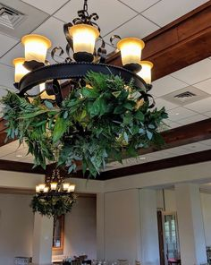 Forest green greenery with eucalyptus hanging from chandelier.