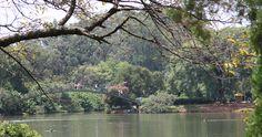 Park Ibirapuera´s lake