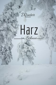 Winter im Harz  http://www.travelandlipsticks.de/index.php/de/blog/26-heimat/302-braunlage  #harz