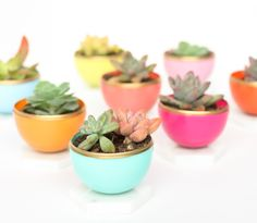 DIY Mini Spring Succulent Planters from Plastic Easter eggs! What a fun craft idea that is perfect for a spring party or bridal shower.