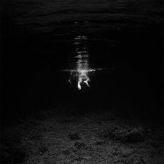 Dive in freedom - Hengki Koentjoro