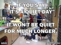 """Don't you dare say """"It's a Qxxxx day!""""  #VeterinaryProfessionalsRock"""