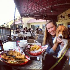 Cute doggy in Taco Tuesdaze. #mexican #dog #cute #beagle #puppy #pet #tacos