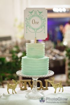 Mint Green Ombre Cake- without the number on it for wedding. Cute Wedding Dress, Perfect Wedding, Wedding Sweets, Wedding Cakes, Rustic Wedding, Wedding Table, Wedding Ideas, Wedding Inspiration, Wedding Details