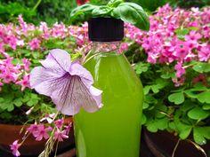 Mint basil juice- perfect for hot days! Hot Days, Basil, Juice, Water Bottle, Mint, Diy Crafts, Creative, Blog, Juicing