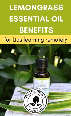 Essential oils like  Lemongrass Essential Oil are excellent for boosting vitality while producing a feeling of renewal. A couple of drops of Lemongrass oil can go a long way in feeling more motivated, focusing amid distractions. Many also find its warming odor to be supportive or reassuring throughout anxious times.Tap the Image for more info. #herbaterraorganics #organicoils #lemongrassoil Lemongrass Essential Oil Uses, Clary Sage Essential Oil, Lemongrass Oil, Orange Essential Oil, Essential Oils For Memory, Oils For Energy, Aromatherapy Recipes, How To Relieve Headaches, Organic Oil