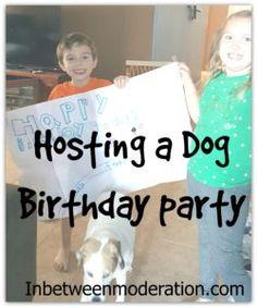 Hosting a Dog Birthday Party Dog Birthday, Birthday Cake, Shakeology, Budgeting Finances, 21 Day Fix, Ecommerce Hosting, Money Tips, Parenting Hacks, Funny Stuff
