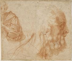 Andrea Del Sarto (actually Andrea d´Agnolo) (1486 - 1530) (Details of artist on Google Art Project) TitleSheet of studies with a youth and ...