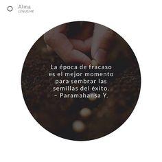 Aprovecha cada situación. | #motivado #emprender #fracaso #éxito #sembrar #vida #semillas #liderazgo #feliz #emprendimiento #bogota #colombia