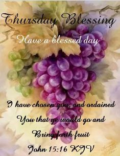 338 Best Thursday Blessings Images In 2019 Good Morning Quotes
