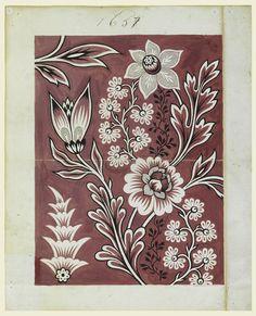 Resultado de imagem para livro BOTANICAL ILLUSTRATION IN GOUACHE
