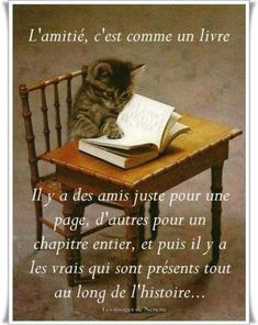 Positive Quotes For Life Encouragement, Positive Quotes For Life Happiness, Positive Attitude, Library Activities, French Quotes, Family Crest, Illustration, Poster, Animals