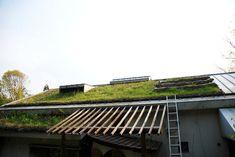 未来を創るニッポンの現場 「長野 安曇野」編 Part2 ゲストハウス「シャンティクティ」が取り組むパーマカルチャーとは|長野県 安曇野市|「colocal コロカル」ローカルを学ぶ・暮らす・旅する