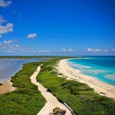 The view from the lighthouse at Punta Sur Eco Park in #Cozumel.