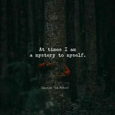 Here is Mysterious Quotes for you. Mysterious Quotes no object is mysterious the mystery is your quote. Mysterious Quotes black is Attitude Quotes, Mood Quotes, True Quotes, Positive Quotes, Motivational Quotes, Positive Life, Family Quotes Love, Mysterious Quotes, Inspirational Quotes Pictures