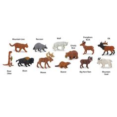 North America Wildlife Toob Mini Figures Safari Ltd