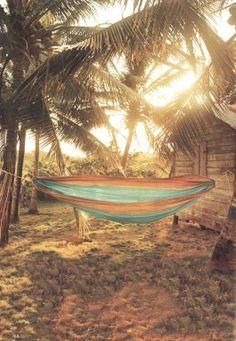 Beach hammock beneath the palm fronds. Life is a Hammock