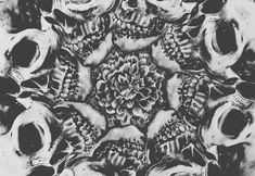 Image for Black And White Background Tumblr
