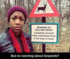 Beware of falling deer. No warning of the leopards.