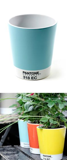 Pantone planters - if I could keep a plant alive, I would plant it in one of these!