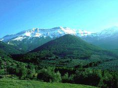 al sur de la provincia de Jaén, en la comarca de Sierra Mágina, siendo la mayor denominación de origen en extensión de las inscritas en la Unión Europea.